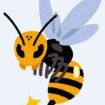 アシナガバチに刺されても病院に行かない場合はどうなる?