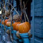 ハロウィンの意味を教えて!なんで皆仮装するの?