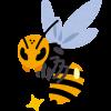 アシナガバチ駆除をペットボトルで簡単に行う方法!気をつけるポイントは?